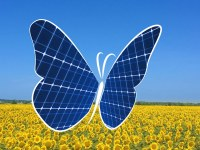 The butterfly effect of photovoltaic panels