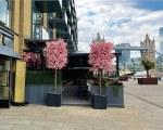 Modern design gazebo for Coco restaurant on Tower Bridge in London