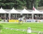 Dynamic - Bramham Horse Trials - Londra